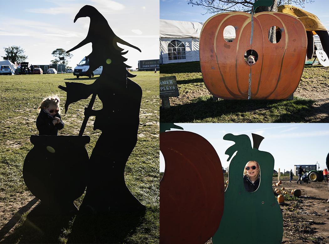 Photo opportunities at Pumpkin Festival