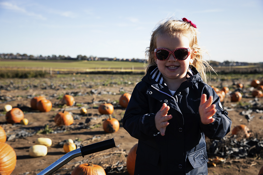 Pumpkin picking at Farmer Copleys
