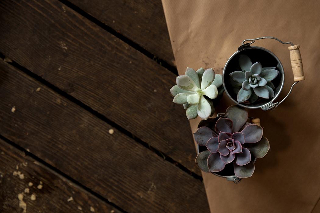 Serendipity Floral Designs