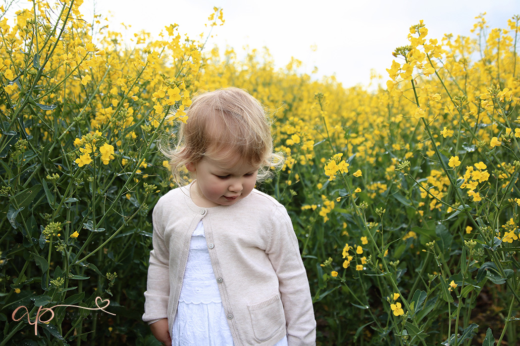 Rapeseed field photo shoot