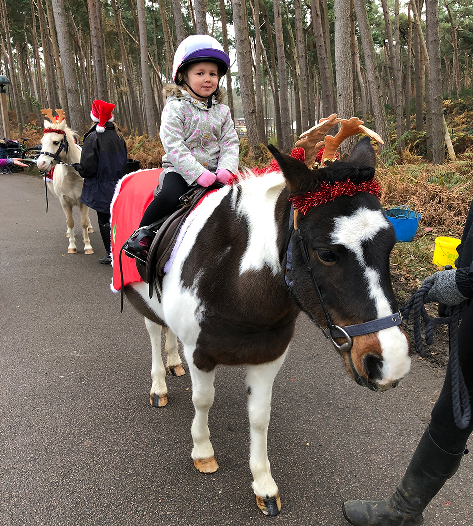 Center parcs christmas pony